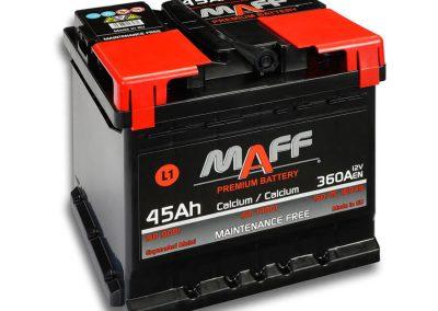 maff45L1_900