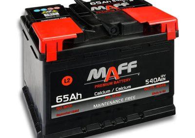 maff65L2_900